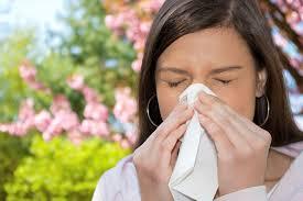 allergie al polline